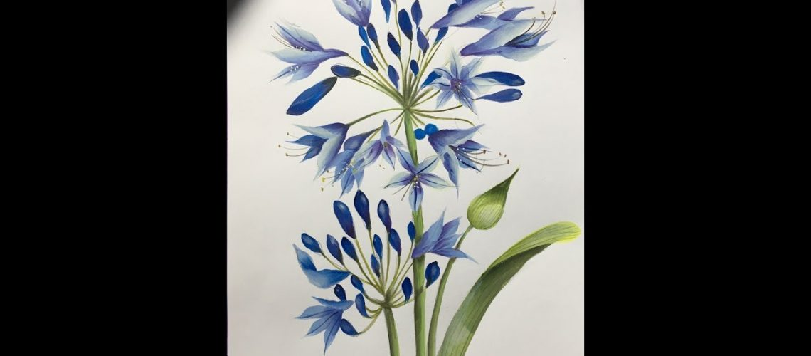How to paint Agapanthus in decorative painting- Como pintar Agapanthus