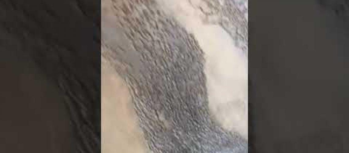 Tadelak uygulama İtalyan dekoratif Boyası dekoratif travetino uygulama videosu İtalyan