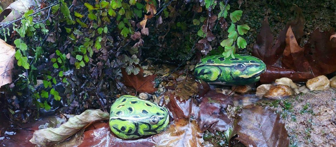 Taştan Kurbağa Yaptık   Making a Frog With a Stone